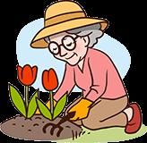 Oma 70 jaar tuinieren