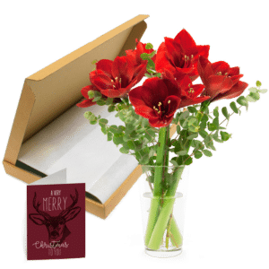 bloemen door de brievenbus
