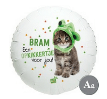 ballon greetz beterschap