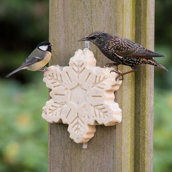 kleinigheidje voor kerst - vettraktatie vogels
