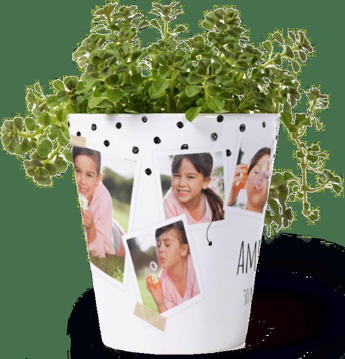 bloempot met foto's - leuk cadeau voor oma