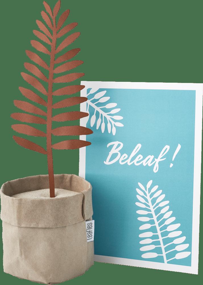 brievenbuscadeau - cadeau voor oma